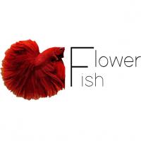 Flower Fish - rasowe bojowniki, high quality betta